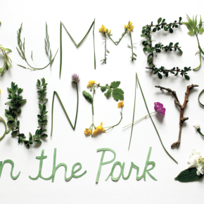 10th Annual Summer Sundays in the Park