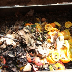 Bring your food scraps & compost them at JH Scraps on Saturdays 10 a.m. - 1 p.m.