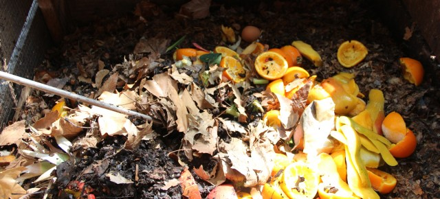 Bring your food scraps & compost them at JH Scraps on Saturdays 11 AM - 1 PM, all year round