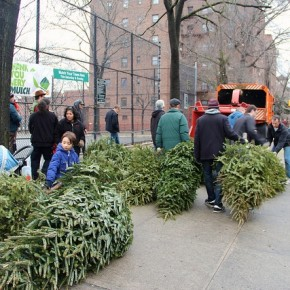 Mulchfest:on Saturday, Jan. 10 or Sunday, Jan. 11 from 10 a.m. to 2 p.m.