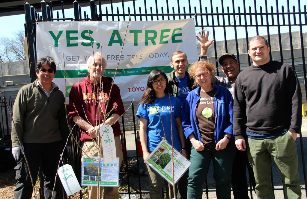 Yes, a tree spring tree giveaway season