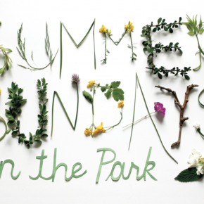 12th Annual Summer Sundays in the Park Performance Series Kick off!
